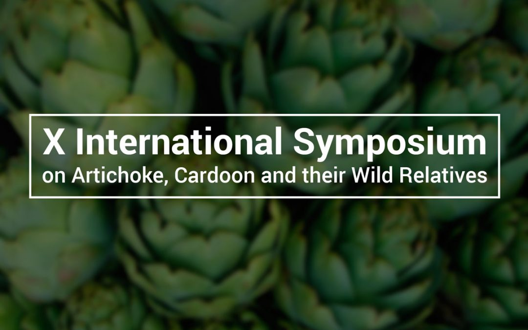 Daymsa sponsors the Artichoke symposium