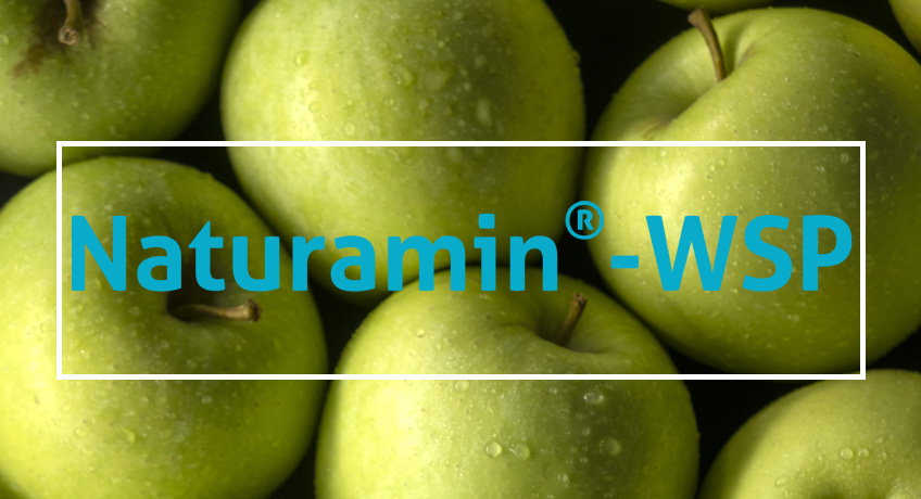 Naturamin® – WSP, 80% free amino acids for a higher crop productivity