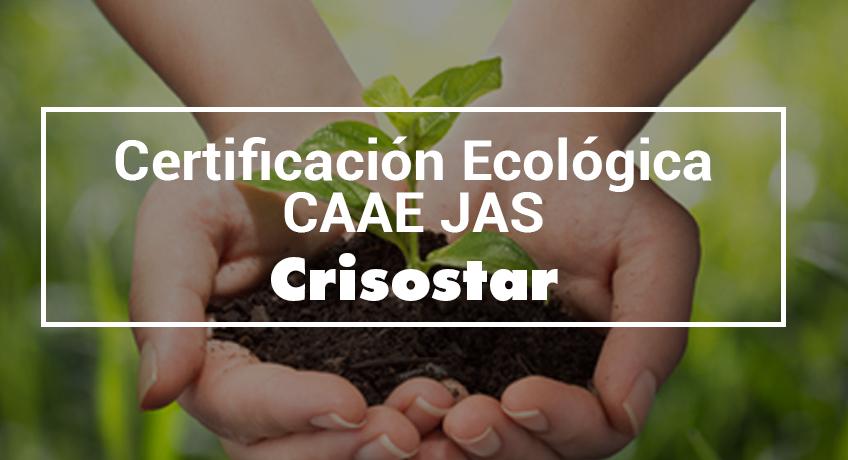 Crisostar, primer producto de biocontrol certificado en Normativa JAS de CAAE