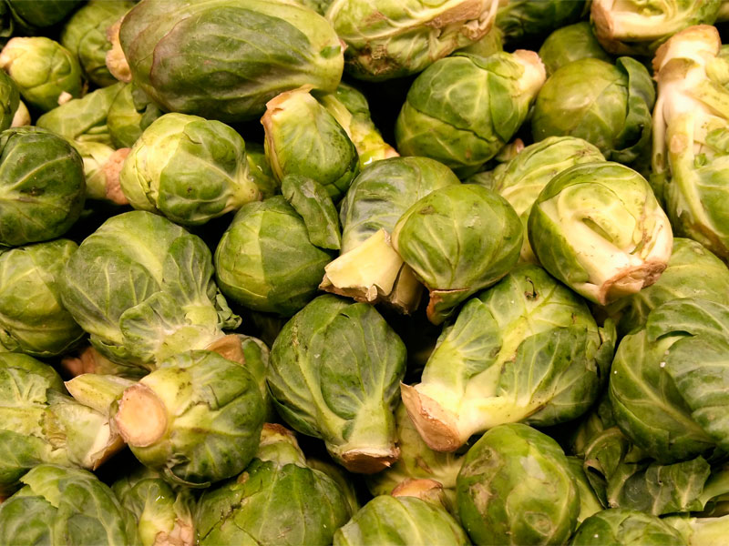 Brussel´s Sprouts