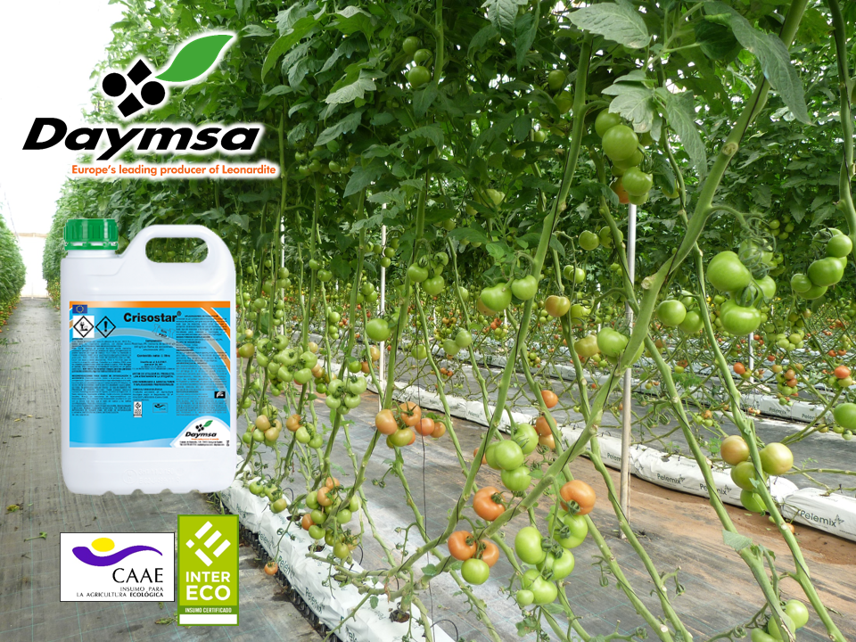 Daymsa presents Crisostar®: a natural insecticide