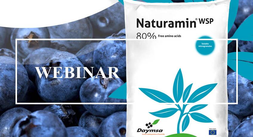 """DAYMSA patrocina el webinar """"Bioestimulación antiestrés en el cultivo del arándano"""